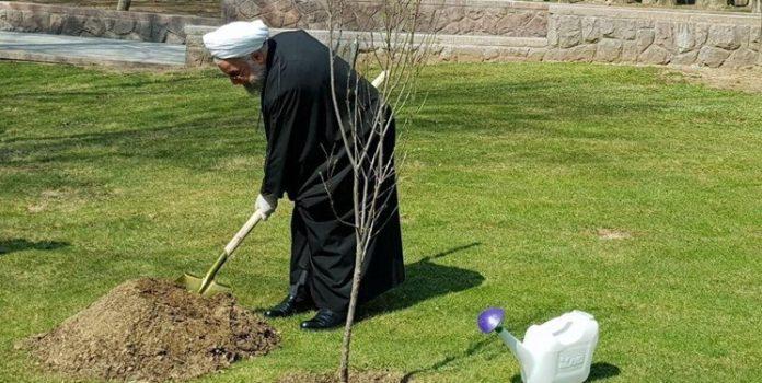 هر کسی یک نشانی به نام درخت از خودش باقی بگذارد