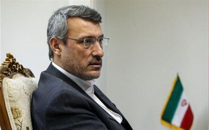 بعیدینژاد: نشست شورای امنیت حمایت بدون قیدوشرط از برجام را ثابت کرد