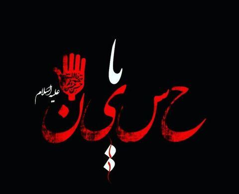 تکیه محرم| مداحی سید هاشم مولایی