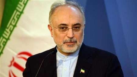 صالحی: شورای عالی امنیت ملی درباره عوامل خرابکاری حادثه نطنز نظر میدهد