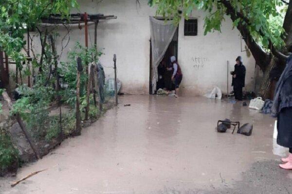 سیلزدگان نگران سرمای شدید پاییز هستند/ چادر سرپناه عشایر سیلزده