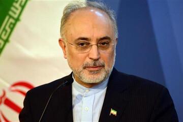 صالحی: آژانس اعلام کرده درخواست دیگری برای بازرسی ندارد