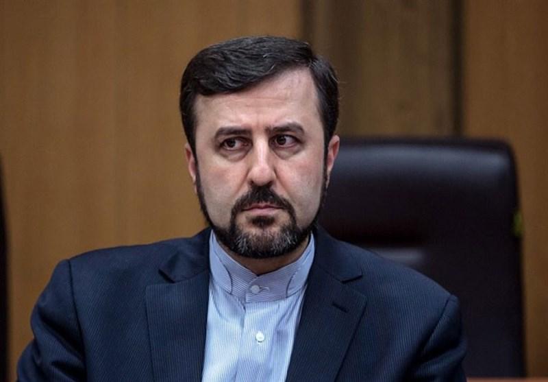 غریبآبادی: امشب نتایج گفتوگوی ایران و آژانس منتشر میشود
