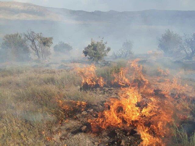 عامل آتش سوزی عمدی مراتع طبیعی میانه دستگیر شد