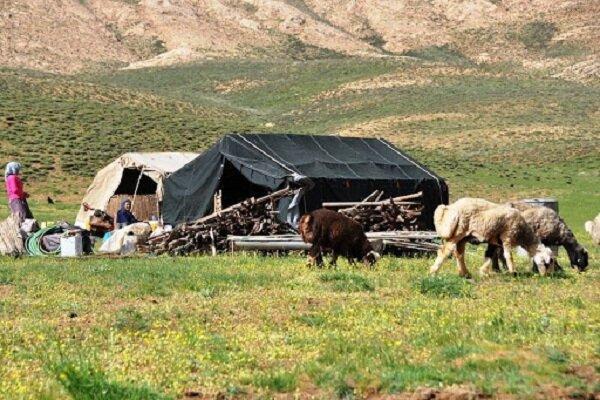 اختصاص ۳۰ میلیارد تومان اعتبار به طرحهای عشایری آذربایجانشرقی