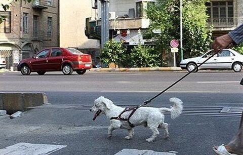 نظر رهبر معظم انقلاب درباره سگ گردانی در معابر و بوستان ها