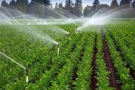 آذربایجان شرقی پیشرو در اجرای شبکه های آبیاری کشاورزی