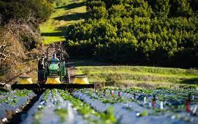 افتتاح پروژه های کشاورزی با اعتبار یک هزار و ۶۰۳ میلیارد ریال