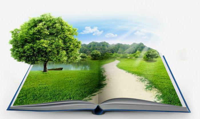 """درس """"محیط زیست"""" به آموزش متوسطه اول اضافه شود"""