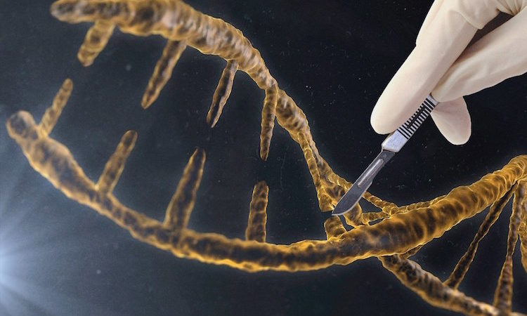 دستکاری ژنتیک شیوه جدیدی از تهدیدات زیستی است