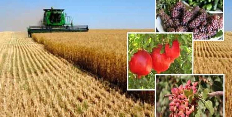 کشورها در شرایط تحریم برای بخش کشاورزی چه میکنند؟