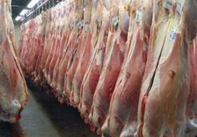 مردم نگران تأمین گوشت قرمز نباشند/ واردات گوشت قرمز از ۵ قاره