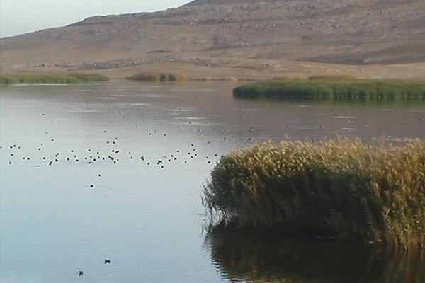 آب به جازموریان بازگشت / اختصاص ردیف بودجه برای احیاء تالاب