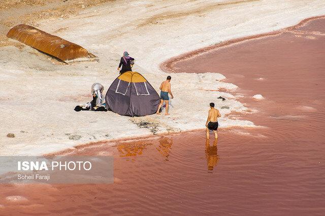 صمغی برای رفع شوری خاکهای دور دریاچه ارومیه