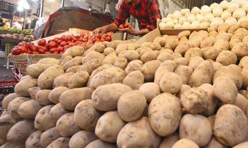 کاهش قیمت سیبزمینی به آینده حواله شد