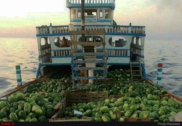 هندوانه به شرط چرخ تراکتور