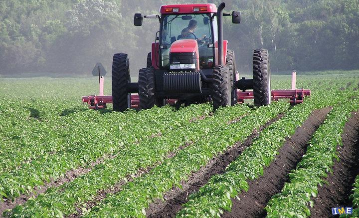 نوسانات نرخ محصولات کشاورزی ، نشانگر آشفتگی بازار است
