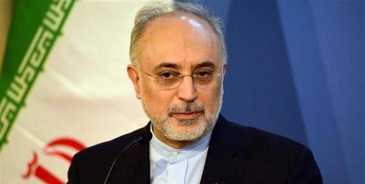 صالحی: کشور بهدلیل تهدیدهای مداوم غربیها و آمریکا به حمله سراغ فردو رفت
