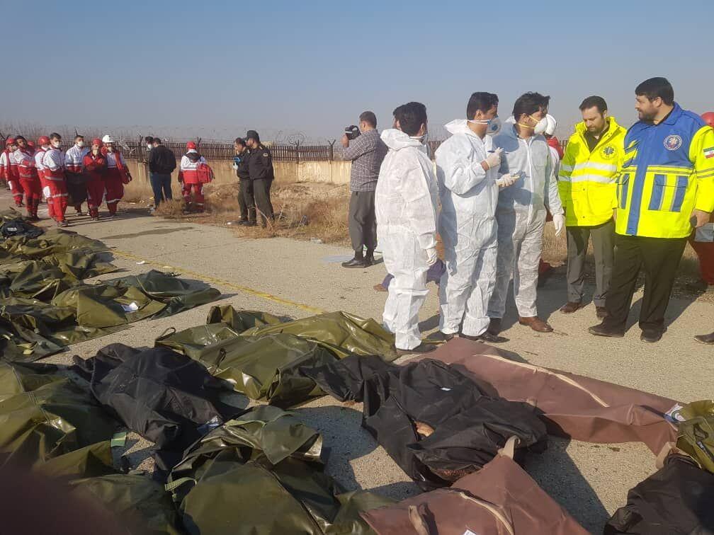 کولیوند: ۱۴۷ ایرانی در سقوط هواپیمای اوکراینی جان باختند