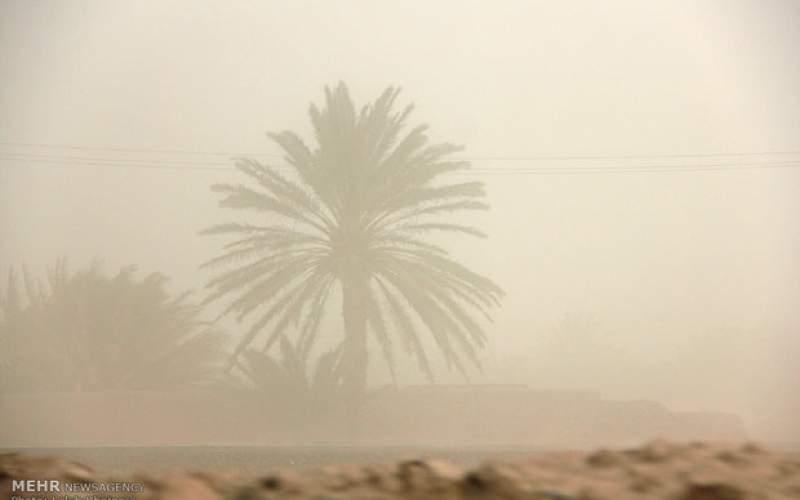 کرمان در گرد و غبار غرق شد